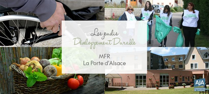 DD MFR