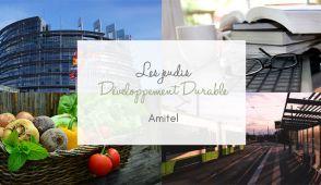 DD Amitel