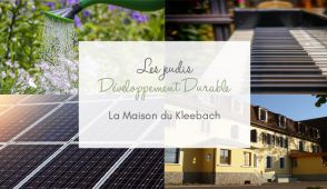 DD Maison du Kleebach