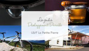 DD ULVF La Petite Pierre